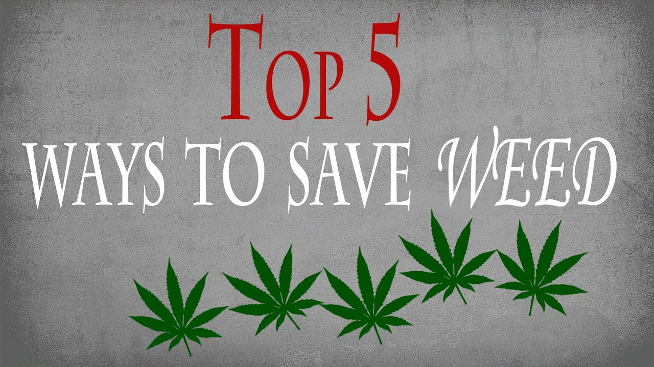 How To Save Weed  Top 5 Ways To Conserve