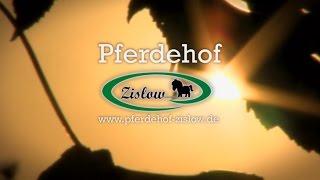 Pferdehof Zislow: Reiten in Mecklenburg-Vorpommern