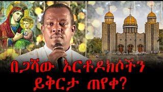 በጋሻው አርቶክሶችን ይቅርታ ጠየቀ? | Ethiopia | Megabi Begashaw