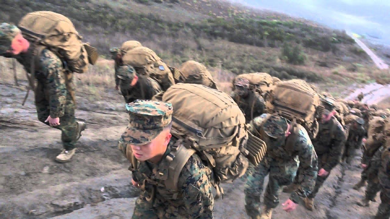 Highlights from Bravo Companies Marine Corps Birthday Hike ...