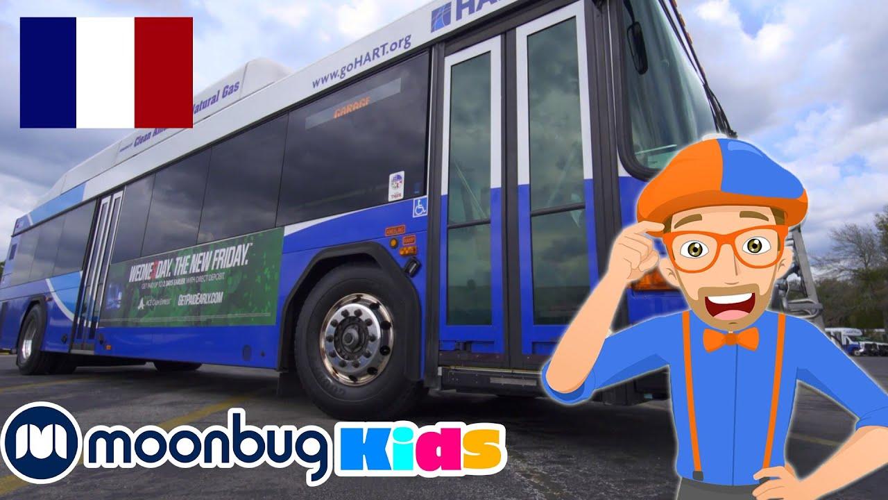 Download Blippi à la découverte d'un bus!   BLIPPI en Français   Vidéos Pour Enfants   Moonbug en Français