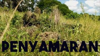 Video LAGU PENYAMARAN TNI | INFANTERI download MP3, 3GP, MP4, WEBM, AVI, FLV April 2018