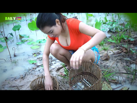 how to make a frog trap that works