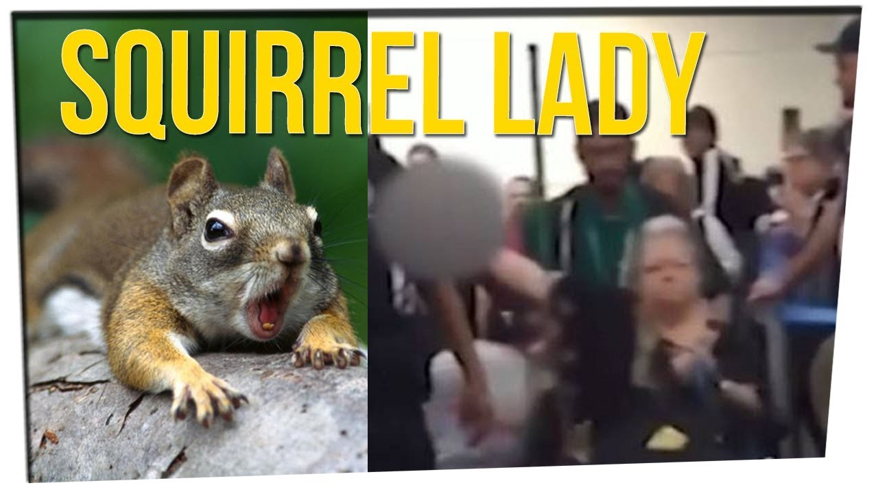lady-kicked-off-flight-for-emotional-support-squirrel-ft-davidsocomedy