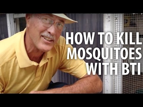 How To Kill Mosquitoes With Bti - The Dirt Doctor