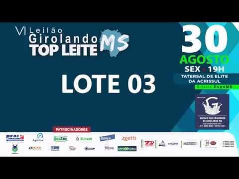 LOTE 03 - GUATEMALA FIV CAPITAL GAIN DA RONDINELA