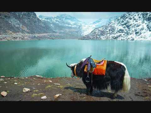 Tujhe yaad na meri aayi Sushma Chhettri