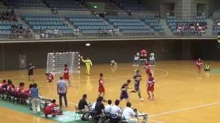 MAH00971 第60回ハンドボール関東大会優勝戦
