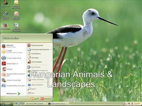 Classic Windows XP Desktop Themes Startup And Shutdown Sounds V3