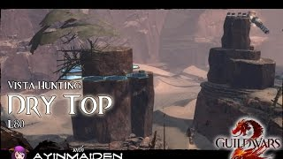 ★ Guild Wars 2 ★ - Vista Hunting - Dry Top