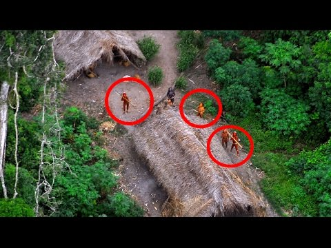 Top 7 UNSOLVED Jungle Mysteries