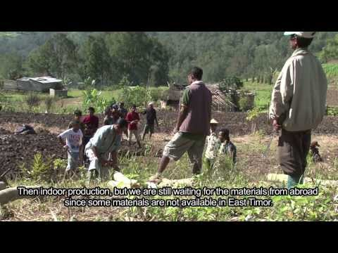 """Money Finds Us"" - Going organic in Timor-Leste"