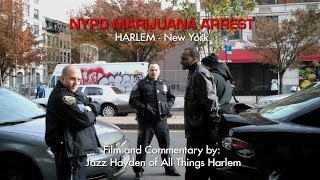 NYPD Marijuana Arrest, Harlem - New York City - War on Drugs