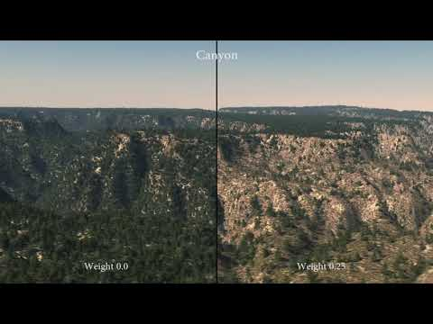 CGI 2017 -  Coherent multi-layer landscape synthesis