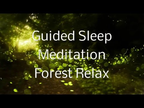 Guided Sleep Meditation FOREST RELAX By Jason Stephenson