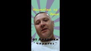 """Рецепт настойки из дыни от Андрея """"Чиритос"""""""