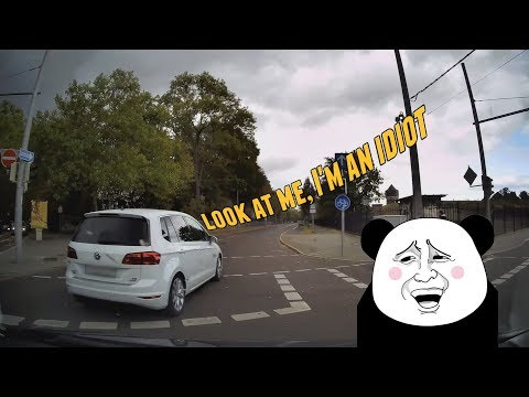Daily Observations and Trolls of the Week 92 ✦ Subscribers Edition ✦ [Dashcam Europe]