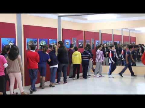 Exposición fotografía submarina 'Chelonia Mydas' de Montse Grillo en Alcalá