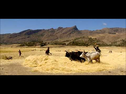 Economic Environment of Somalia