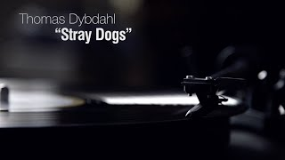 Watch Thomas Dybdahl Stray Dogs video