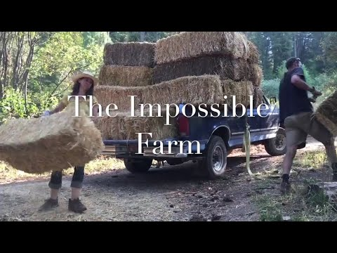 The Impossible Farm