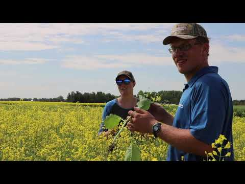 Lakeland College | Student-Managed Farm - Powered By New Holland 30th Anniversary