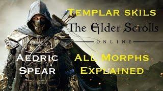 Elder Scrolls Online: Templar Skills Morph Guide - Aedric Spear