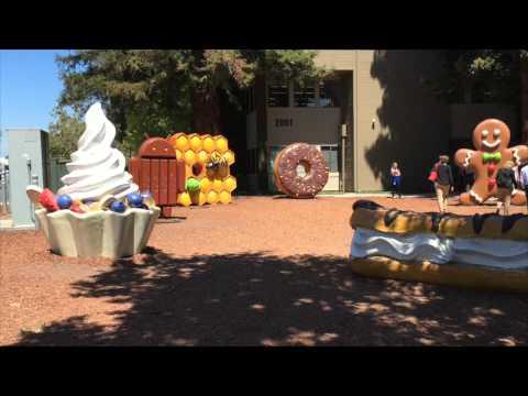 Scenes From My Visit to Googleplex