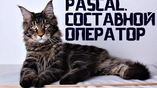 Pascal/Паскаль для начинающих. Урок №8. Составной оператор