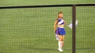 Yakult Swallows Game 2 of 4 (cheerleaders at a baseball game?)