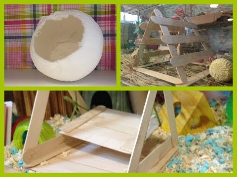 Ролик DIY toys for your hamsters