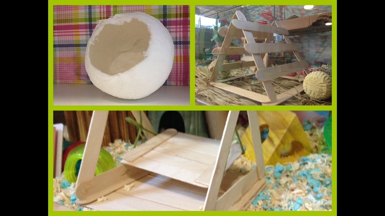Diy toys for your hamsters doovi for How to build a hamster cage