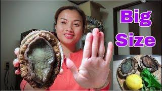 🇯🇵Lần Đầu Ăn Thử Bào Ngư Khổng Lồ Tái Chanh & Sashimi Giòn Sực Sực - Cách Chế Biến Bào Ngư #172