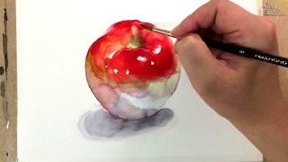 (기초 수채화) 사과 그리기 수채화, 정물수채화