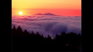 CLOUD TREES - Midori - Reiki, Healing and Meditation Music