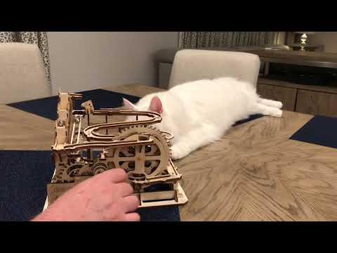 Solid White Turkish Van Cat Watching Marble Toy