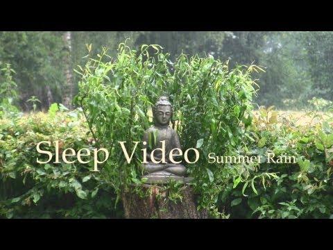 Summer Rain - Sleep Video - 60mins Nature Sound - Relaxation & Restful Sleep