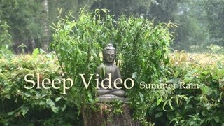 Summer Rain - Sleep Video - 60mins Nature Sound - Relaxation & Restful Sleep