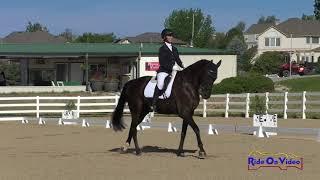 026D Christi Payne on Maxwell Smart Preliminary Horse Dressage USEA AEC August 2018