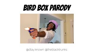 bird-box-parody