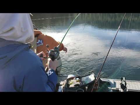 Fishing Lake Siskiyou