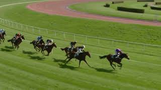 Vidéo de la course PMU PRIX DU LAC DE NEUCHATEL