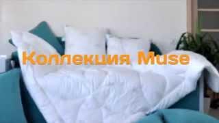 muse(Для поиска: Купить подушку Антиаллергенное Одеяло Купить одеяло Как правильно выбрать одеяло Магазин..., 2015-10-07T19:47:49.000Z)