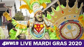 Mardi Gras 2020 in New Orleans: Parades, WWLTV liv...