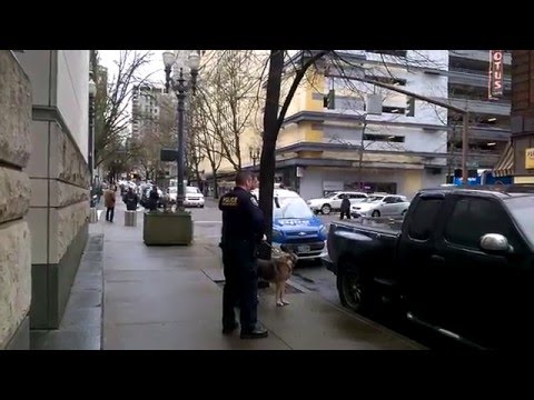 Pete Santilli, Bundy Trial: K9 Bomb Sniffing Dog & Homeland Security