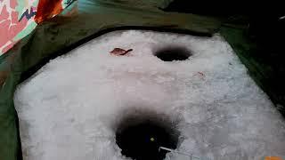 Рыбалка г.Запорожье в Разумовке со льда : архив 2017