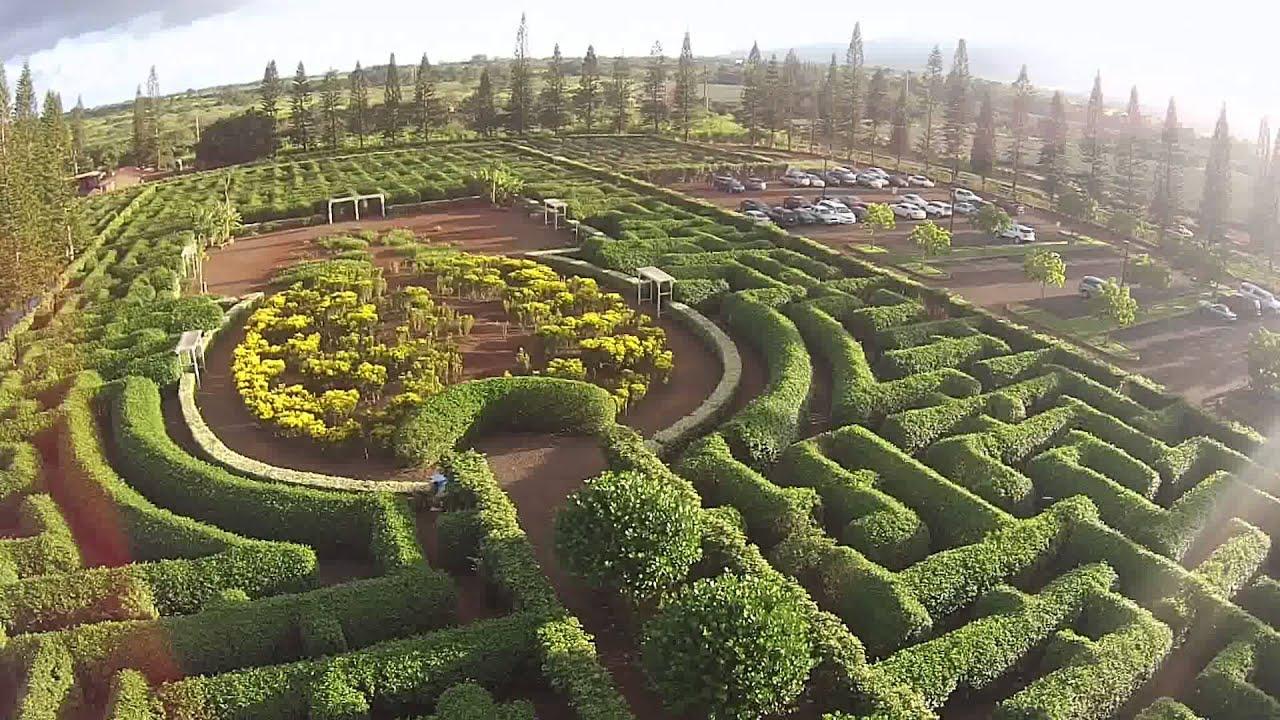 Dole Plantation in Hawaii DJI Phantom Drone - YouTube