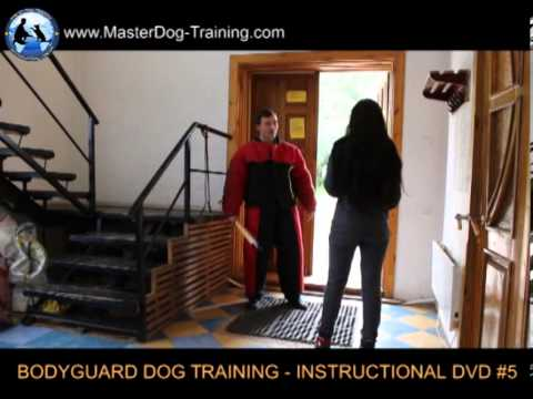 Bodyguard Dog Training - Level Two - Instructional DVD