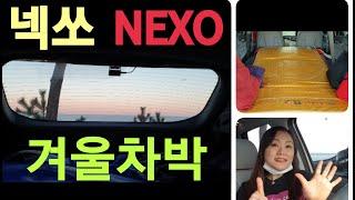 Hyundai NEXO 2020 수소전기차 넥쏘의 겨울…
