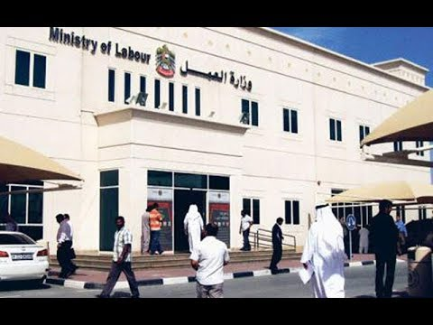 How to complain lobour ministry in UAE,  employer does not treat as contract.